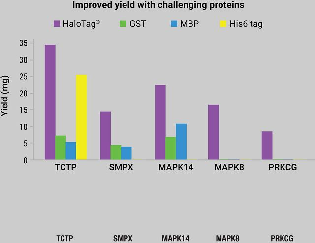 HaloTag® Technology improves purification of difficult proteins.
