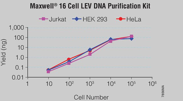 DNA isolated from 10, 100, 1,000, 10,000 and 100,000 cells suspended in PBS and culture medium using the Maxwell® 16 Cell LEV DNA Purification Kit.