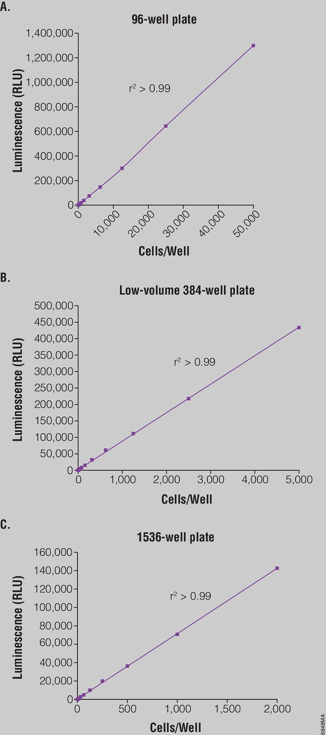 Cell number correlates with luminescent output.